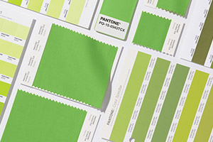 Pantone Greenery Color